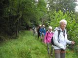 17.08.19  Eifelbahnsteig, von Blankenheim nach Nettersheim
