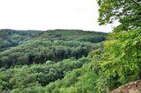 12.10.2019 Ein schöner Blick über das tolle Waldgebiet.