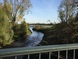 26.10.19 Hier fließt die Erft in den Rhein