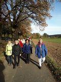 16.11.19 Mit Vera, von Satzwey nach Bad Münstereifel