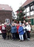 30.11.19 Unterwegs von Kettwig nach Mühlheim-Selbeck ein Weihnachtsbaum