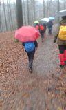 1.02.20 Von Vohwinkel nach Gruiten, nur Regen, Regen, ..