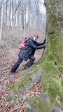 08.02.2020 Ein Prachtstück von Baum.Karl Heinz hat versucht ihn zu versetzen. Hat nicht geklappt.