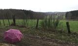 22.02.20 Veras Schirm - sehr dekorativ vor der bergischen Landschaft