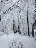 26.02.20 Eine traumhafte Winterlandschaft auf dem Röntgenweg.