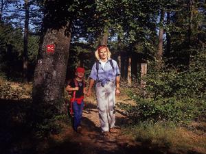 Familienwandertag in Fleckenberg im Sauerland