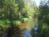 Flussaue der Diemel