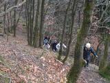 Natursteig(6)