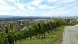 Bild 05 Blick aufs Rheintal mit Vogesen