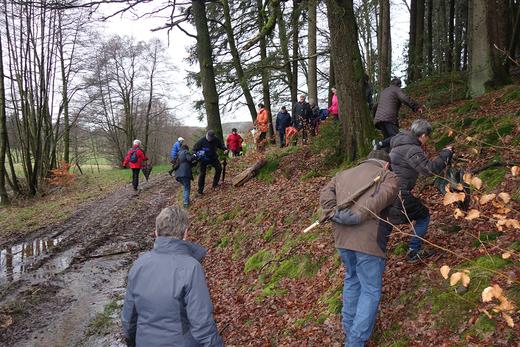 04.02.2020: Eine verhältnismäßig große Teilnehmerzahl trotz schwieriger Wegverhältnisse nach anfänglichem Schneefall auf dem Weg von der Güntenbecker Brücke in die Hahnenbecke.