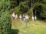 15 schöne Aussicht auf Gamburg