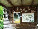 07 Ausstellung von Nisthilfen