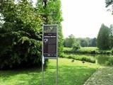 07 Gänse im Schlosspark
