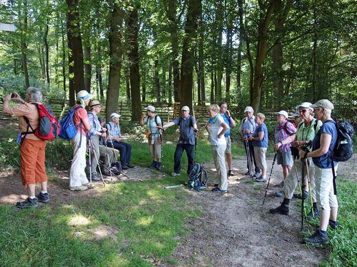 Wanderfreizeit im Teutoburger Wald