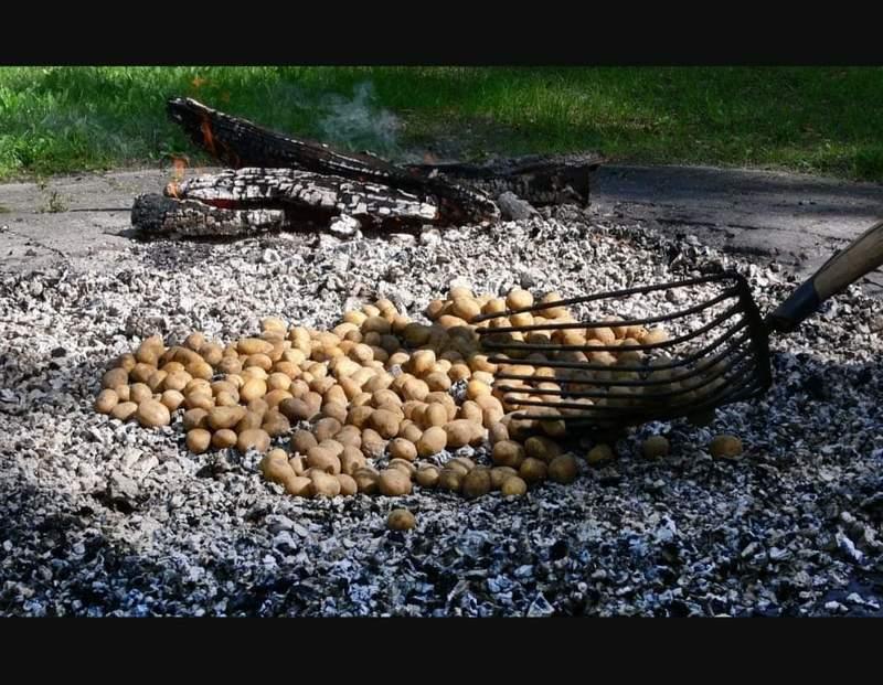 Kartoffelbraten