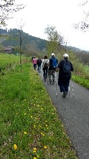 Wanderweg zum Wenneflusstal