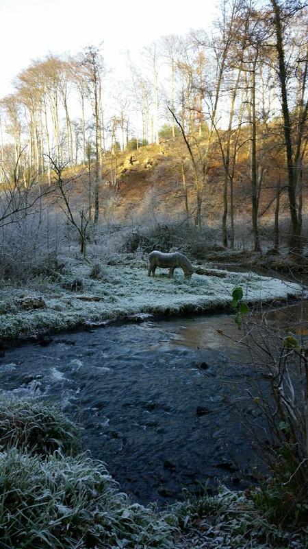 Winter im Angertal