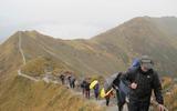 Auf dem Weg zum Fellhorn