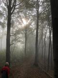 1 - Zur Drachenschlucht im Nebel