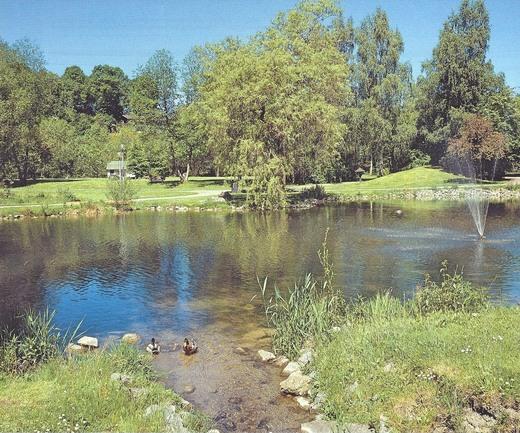 Weiher im Kurpark Schmallenberg