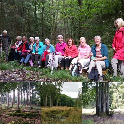 Abwechslungsreichen Wanderung mit Ingeborg Möllers